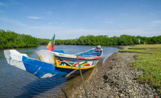 Colorful,Wooden,Boat,Or,Pirouge,Moored,In,Mangrove,Forest,Of