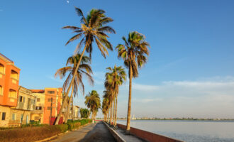 Coastal,Street,With,High,Palm,Trees,During,Sunset,In,Saint-louis,